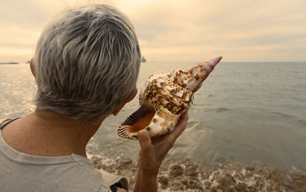 a woman holding a sea shell by the sea shore